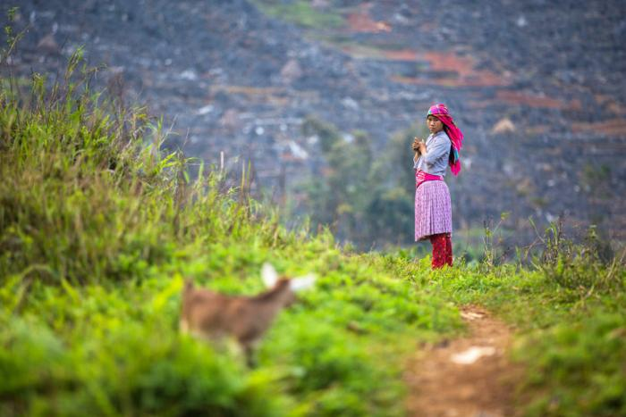 Une jeune fille dans la province de Ha Giang, Vietnam. Photo: Plan International/Vincent Tremeau